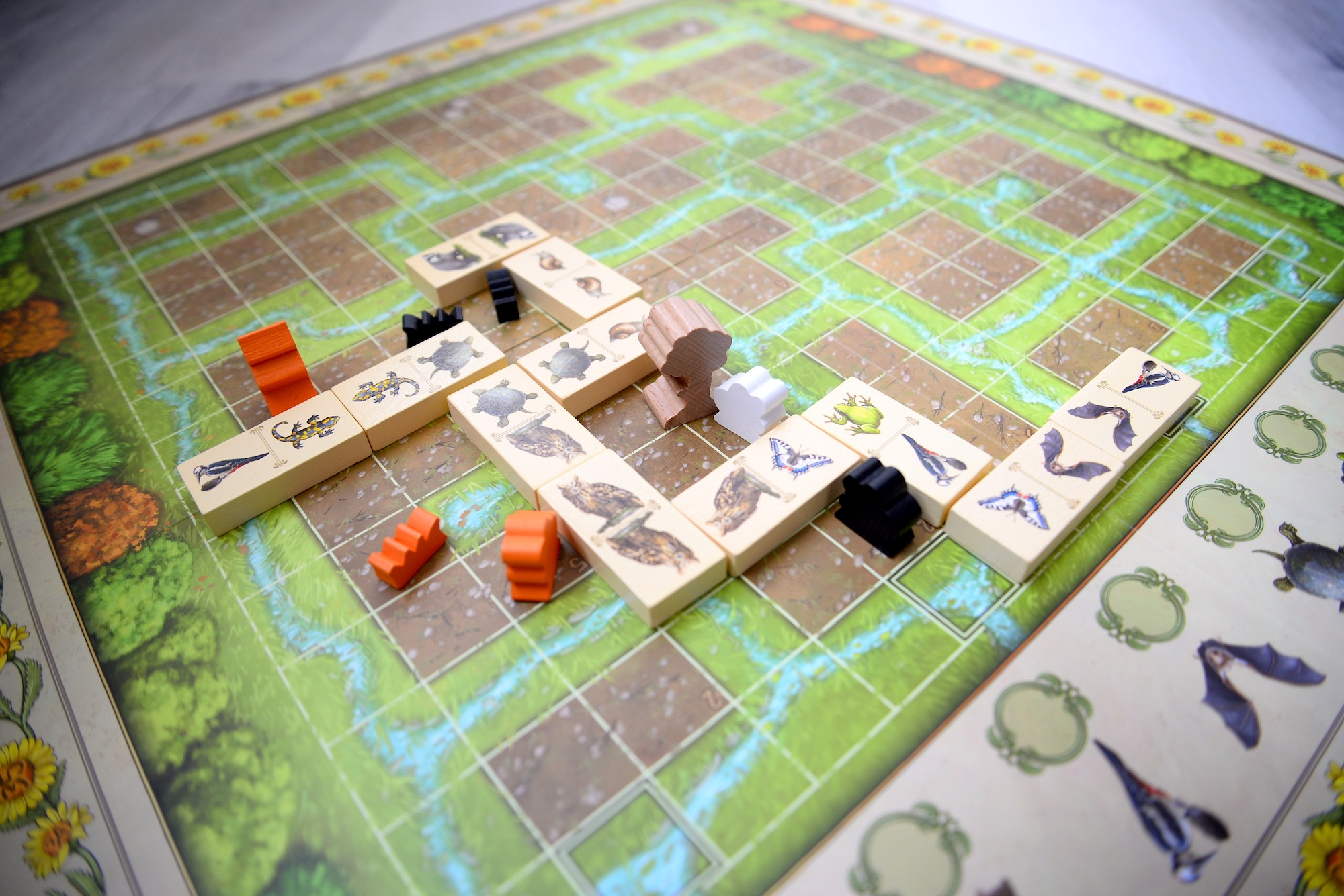 renature-jeu-dominos-test-3
